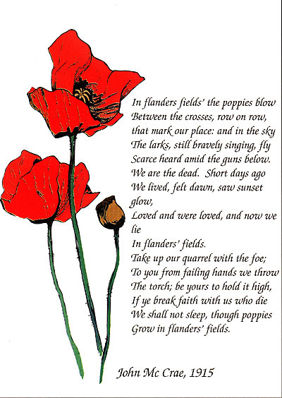 Poppy poem home page family history mightylinksfo